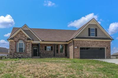 Marshall County Single Family Home For Sale: 5223 McKinnley Dr