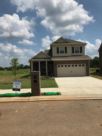 Single Family Home For Sale: 3134 Rift Lane Lot 40