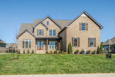 Brentwood, Fairview, Franklin, Spring Hill, Thompson's Station, Thompsons Station Single Family Home For Sale: 4013 Cardigan Ln (Lot 273)