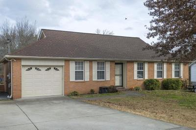 Rutherford County Single Family Home For Sale: 123 Branford Dr