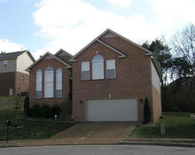 Davidson County Single Family Home For Sale: 2005 Skyshore Way