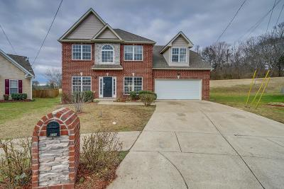Davidson County Single Family Home For Sale: 1629 Good Day Ct