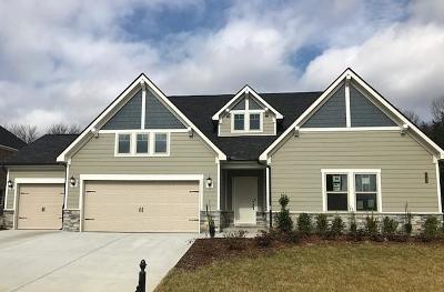 Williamson County Single Family Home For Sale: 1709 Kirkpark Court