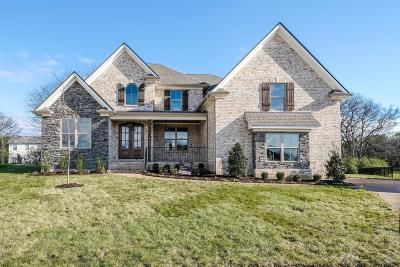 Spring Hill Single Family Home Under Contract - Not Showing: 105 Cardigan Court (220)