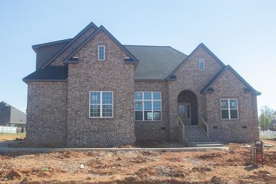 Clarksville Single Family Home For Sale: 13 Savannah Glen