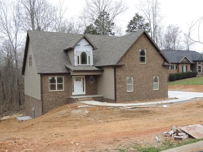 Clarksville TN Single Family Home For Sale: $298,000