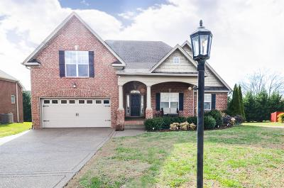 Davidson County Single Family Home For Sale: 1917 Hawks Nest Dr