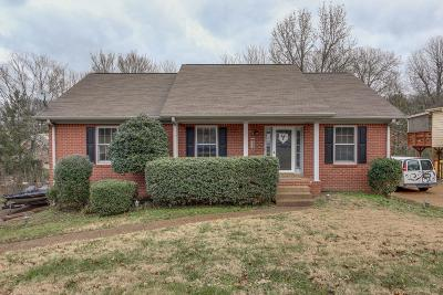 Nashville Single Family Home For Sale: 1056 Fitzpatrick Road