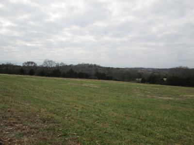 Mount Juliet Residential Lots & Land For Sale: 1000 York Rd