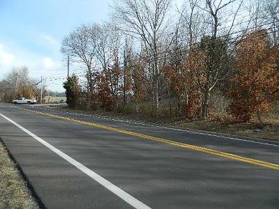 Thompsons Station  Residential Lots & Land For Sale: Bethesda