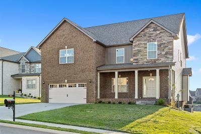 Clarksville Single Family Home For Sale: 371 Farmington