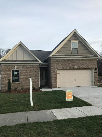 Mount Juliet Single Family Home For Sale: 27 Bailey's Branch (Lot 522)