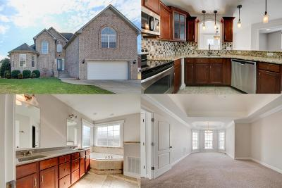 Clarksville Single Family Home For Sale: 1248 Viewmont Dr