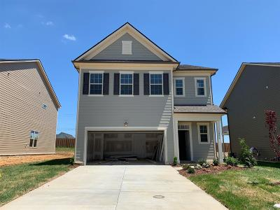 Spring Hill Single Family Home For Sale: 1006 Lonergan Circle #04