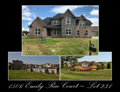 Single Family Home For Sale: 1506 Emily Rae Ct - Lot 231
