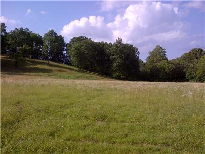 Charlotte Residential Lots & Land For Sale: Highway 48 N