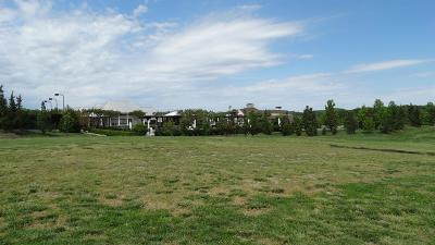College Grove Residential Lots & Land For Sale: 6046 Pelican Way (Lot 2066)