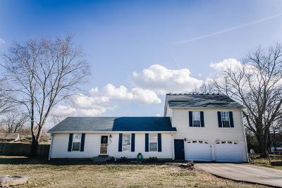 Smyrna Single Family Home For Sale: 304 Custer Ct