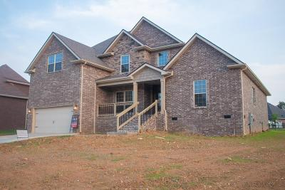 Clarksville Single Family Home For Sale: 12 Savannah Glen
