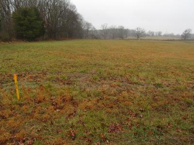 Sumner County Residential Lots & Land For Sale: 1438D A. B. Wade Road