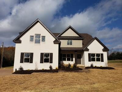 Mount Juliet Single Family Home For Sale: 7316 Couchville Pike