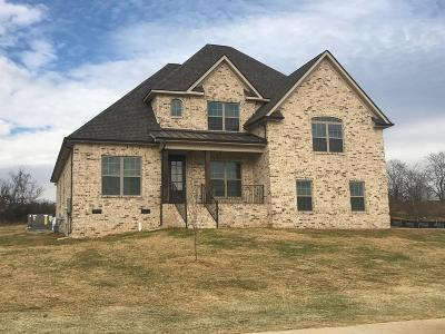 Lavergne Single Family Home Under Contract - Not Showing: 217 McGreevy Dr