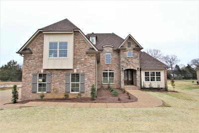 Lebanon Single Family Home For Sale: 819 Brook Trail #88