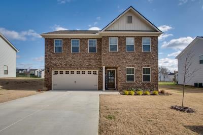 Spring Hill Single Family Home For Sale: 3039 Commonwealth Dr