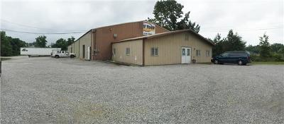 Adams, Clarksville, Springfield, Dover Commercial For Sale: 251 Warfield