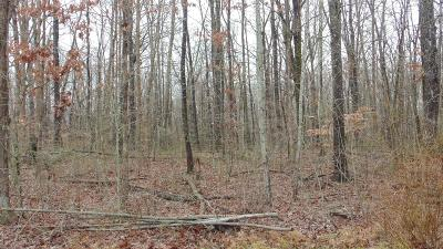 Residential Lots & Land For Sale: Mountain Shadows