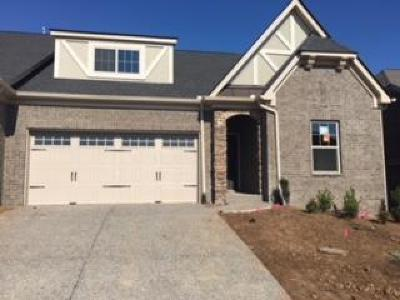 Stonebridge, Stonebridge Ph 1, 2, 3, Stonebridge Ph 11, Stonebridge Ph 17 Single Family Home For Sale: 858 Meadowcrest Way (820)