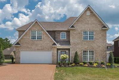 Smyrna Single Family Home Under Contract - Not Showing: 7676 Knobdate Rd