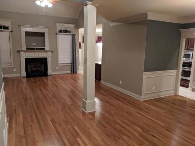 Smyrna Single Family Home For Sale: 1005 Idealist Ct
