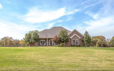 Spring Hill Single Family Home Under Contract - Not Showing: 3649 Stonecreek Dr