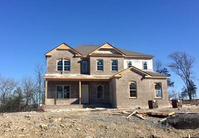 Nolensville Single Family Home For Sale: 2080 Catalina Way Lot #46