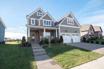 Hendersonville Single Family Home For Sale: 814 Cherry Grove Dr