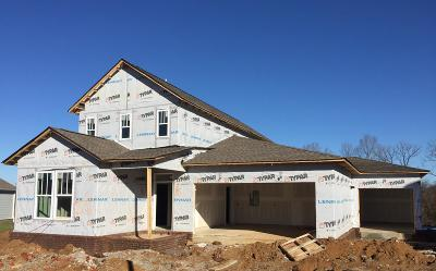 Thompsons Station  Single Family Home Under Contract - Not Showing: 3347 Vinemont Drive #1537