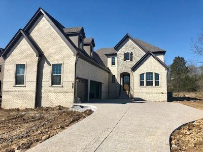 Nolensville Single Family Home For Sale: 108 Asher Downs Circle #2