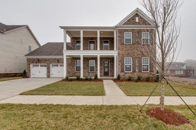 Sumner County Single Family Home For Sale: 135 Ashington Circle Lot 113
