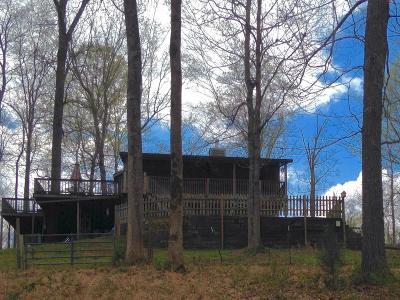 Ashland City, Pleasant View, Joelton, Pegram Single Family Home For Sale: 1101 Luster Harris Rd