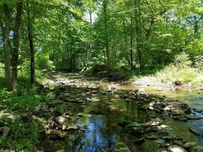 Williamson County Residential Lots & Land For Sale: 5770 S Lick Creek Rd