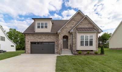 Clarksville Single Family Home For Sale: 75 Gallant Ct