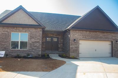 Clarksville Single Family Home For Sale: 7 Village Terrace