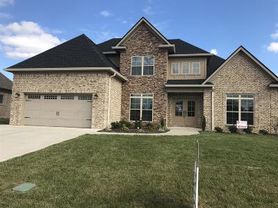 Murfreesboro TN Single Family Home Under Contract - Not Showing: $374,900