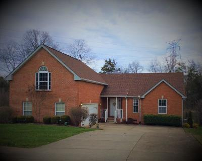 Mount Juliet Single Family Home For Sale: 4007 Affirmed Dr