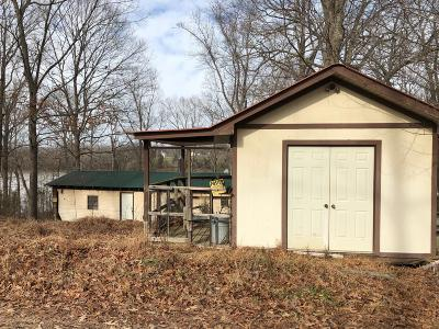 Houston County, Montgomery County, Stewart County Single Family Home For Sale: 302 Tobaccoport Circle Rd