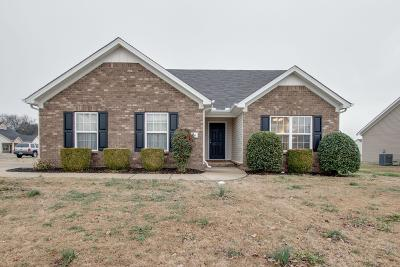 Smyrna Single Family Home Under Contract - Showing: 381 Sarava Ln