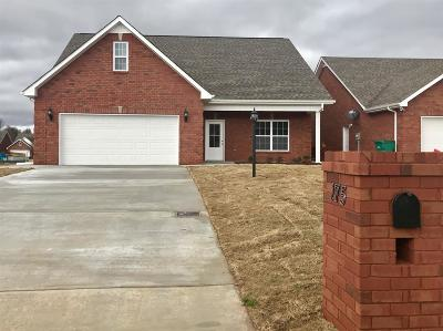 Franklin County Single Family Home For Sale: 175 Chase