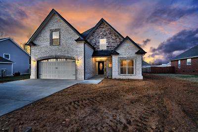 Clarksville Single Family Home For Sale: 1002 Garner Hills Dr