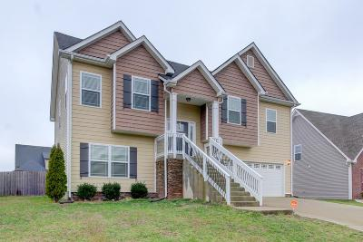 Clarksville Single Family Home For Sale: 2964 McMcanus Cir.